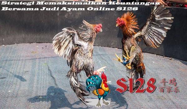 Strategi Memaksimalkan Keuntungan Bersama Judi Ayam Online S128